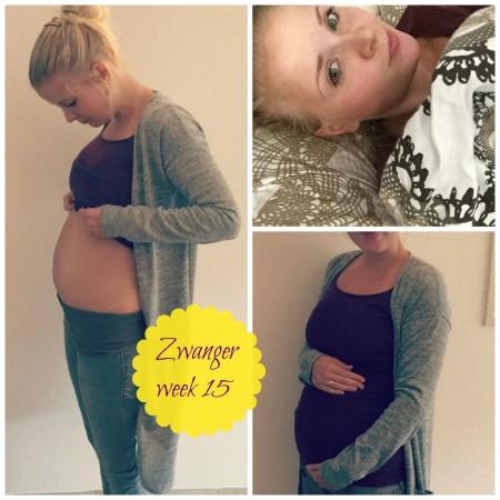 zwangerweek15
