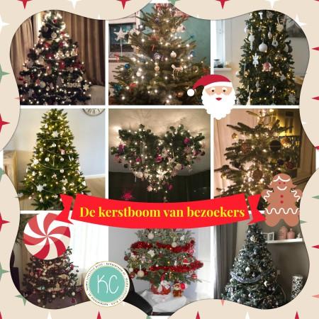 kerstboom van bezoekers