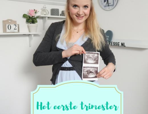 eerste trimester
