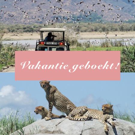 Op safari, zanzibar, tanzania, safari vakantie, safari met kinderen