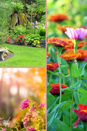 Het hele jaar door genieten van de tuin!